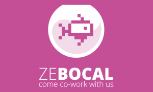 zebocal-come-co-work-with-us