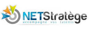 NET STRATEGE