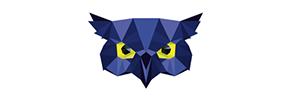 Logo de l'adhérent Strigi-Form