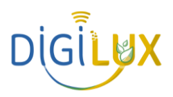 Logo de l'adhérent SARL DIGILUX